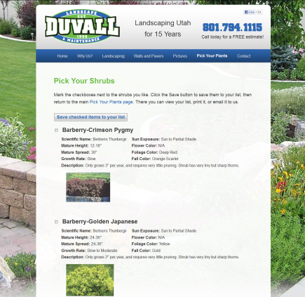 Duvall Landscaping - website by noxad
